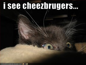 i see cheezbrugers...