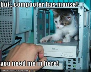 but...compooter has mouse!  you need me in here!
