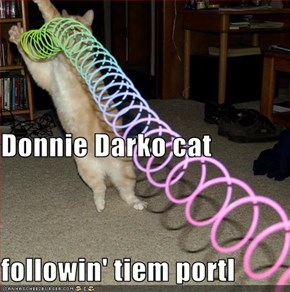 Donnie Darko cat followin' tiem portl