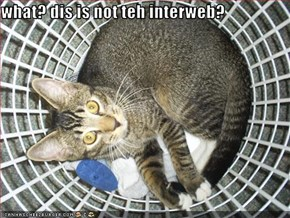what? dis is not teh interweb?