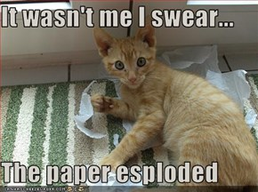 It wasn't me I swear...  The paper esploded