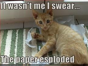 It wasn't me I swear...  The paper esploded