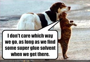 I don't care which way we go, as long as we find some super glue solvent when we get there.
