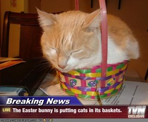 Breaking News - The Easter bunny is putting cats in its baskets.