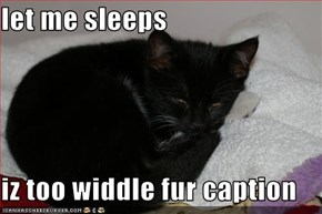 let me sleeps  iz too widdle fur caption