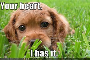 Your heart.                   I has it.