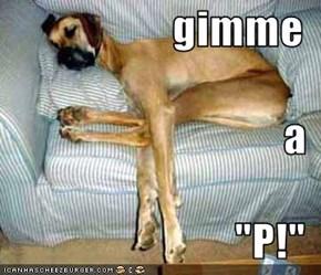 """gimme a  """"P!"""""""