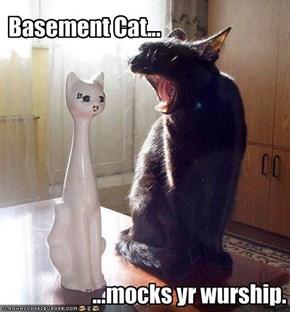 Basement Cat...
