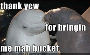 thank yew  for bringin me mah bucket