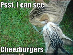 Psst, I can see  Cheezburgers