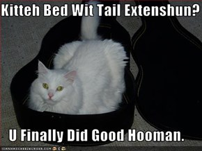 Kitteh Bed Wit Tail Extenshun?  U Finally Did Good Hooman.