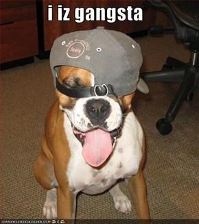 i iz gangsta