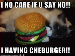 I NO CARE IF U SAY NO!!  I HAVING CHEBURGER!!