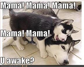 Mama! Mama! Mama! Mama! Mama! U awake?