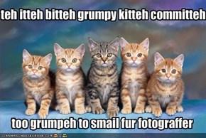 teh itteh bitteh grumpy kitteh committeh