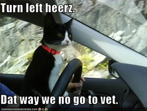 Turn left heerz.  Dat way we no go to vet.