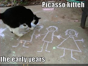 Picasso kitteh  the early years