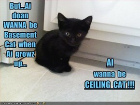 But...Ai  doan  WANNA  be  Basement  Cat  when  Ai  growz  up...