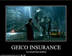 GEICO INSURANCE