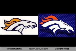 Breck Mustang Totally Looks Like Denver Bronco
