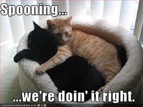Spooning...  ...we're doin' it right.