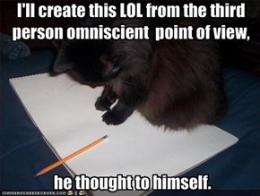 I'll create this LOL from the third person omniscient  point of view,