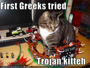 First Greeks tried  Trojan kitteh
