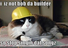i  iz not bob da builder  so stop singin dat songz