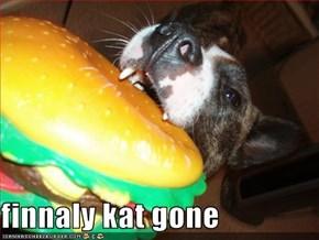 finnaly kat gone
