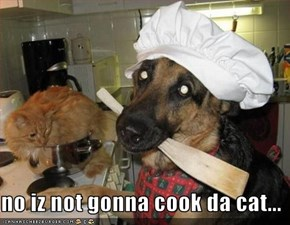 no iz not gonna cook da cat...