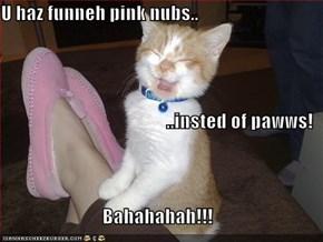 U haz funneh pink nubs.. ..insted of pawws! Bahahahah!!!