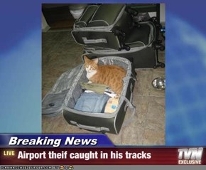 Breaking News - Airport theif caught in his tracks