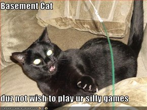 Basement Cat  duz not wish to play ur silly games