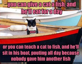 you can give a cat a fish, and he'll eat for a day
