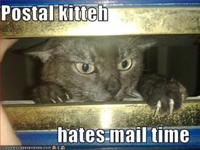 Postal kitteh  hates mail time