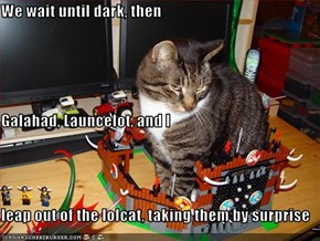 We wait until dark, then Galahad, Launcelot, and I leap out of the lolcat, taking them by surprise