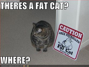 THERES A FAT CAT?  WHERE?