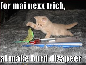 for mai nexx trick,  ai make burd dizapeer