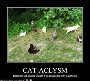 CAT-ACLYSM