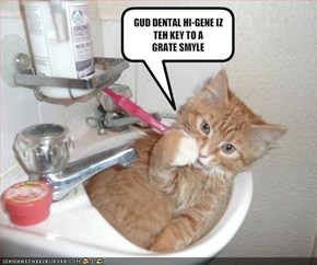 GUD DENTAL HI-GENE IZ TEH KEY TO A 