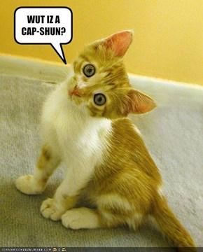 WUT IZ A CAP-SHUN?