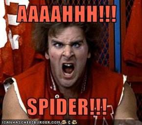 AAAAHHH!!!  SPIDER!!!