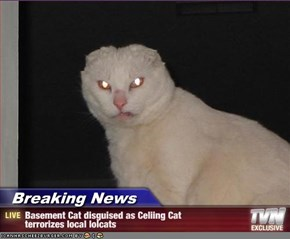 Breaking News - Basement Cat disguised as Celiing Cat terrorizes local lolcats
