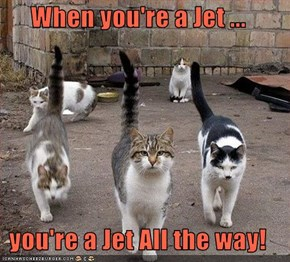 When you're a Jet ...  you're a Jet All the way!