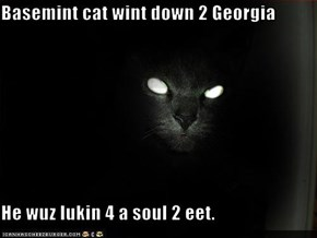 Basemint cat wint down 2 Georgia  He wuz lukin 4 a soul 2 eet.