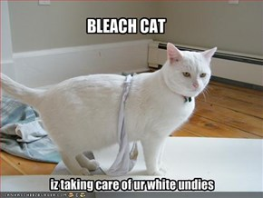 BLEACH CAT