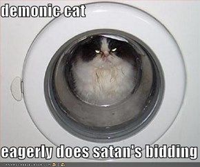 demonic cat  eagerly does satan's bidding