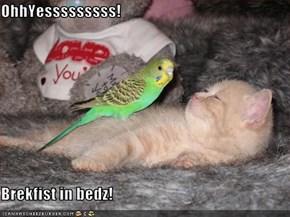 OhhYesssssssss!  Brekfist in bedz!