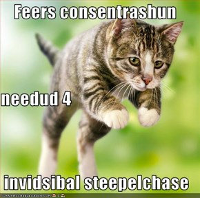 Feers consentrashun  needud 4 invidsibal steepelchase
