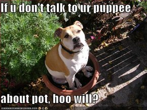 If u don't talk to ur puppee  about pot, hoo will?